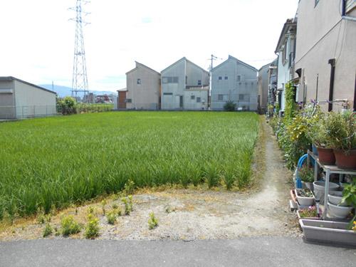 農地から戸建て住宅